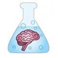 Brainlabs Global